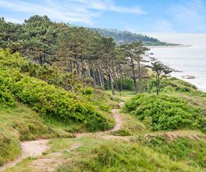 Tinkerup strandvej 8, 3250 Gilleleje